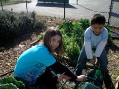 Watering in the 4th/5th grade garden